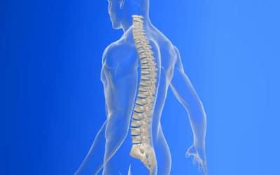 Dolore al collo? Cervicale? Scopri il ruolo di denti e postura!